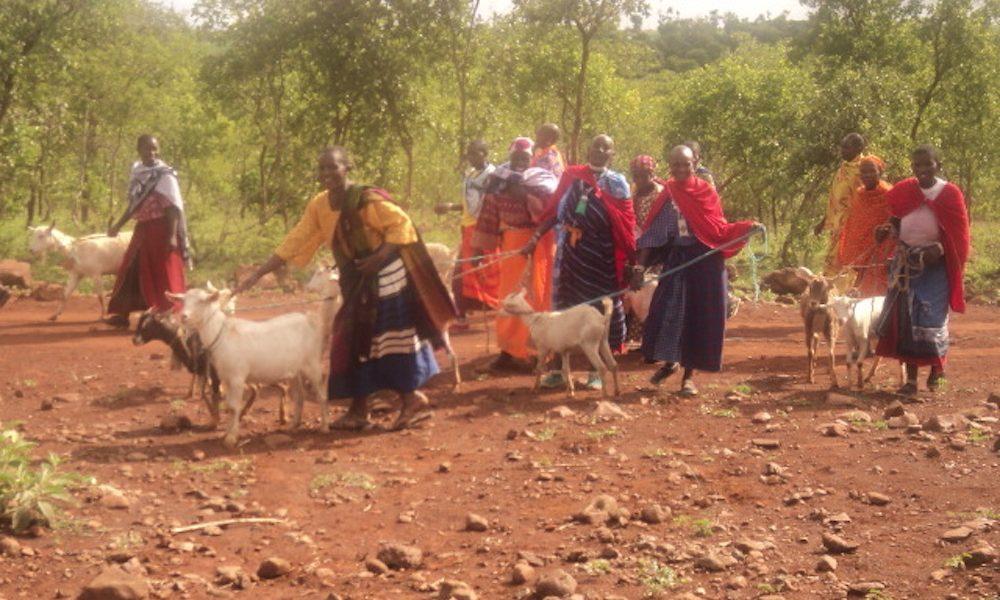 Ruconet Tanzania1