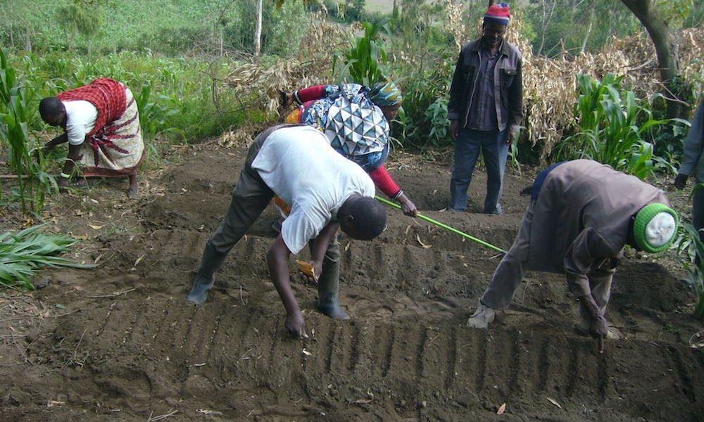Ruconet Tanzania6
